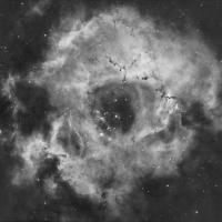 Rosette nebula web